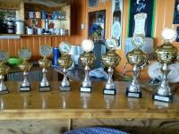 Pokale 2016