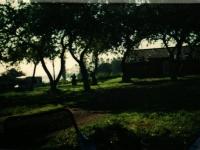 IMAG0235